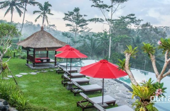 Villa Kembang Bali - Pool and View