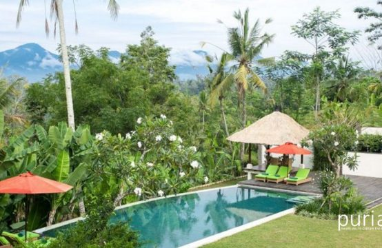Villa Vastu - Pool and View