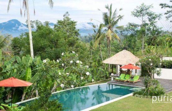 Villa Vastu - Pool and View