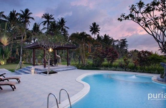 Villa Cemadik - Pool