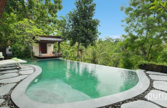 Villa Beji Mawang - Pool and Villa