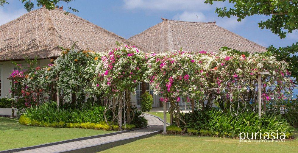 Villa Ocean Bliss   Garden Entrance